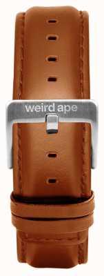 Weird Ape Couro marrom fivela de prata 20mm cinta ST01-000100