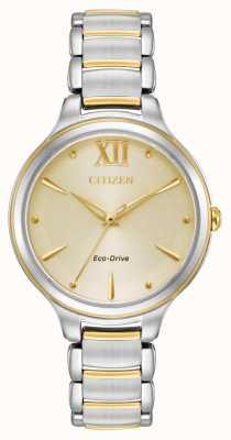 Citizen Womens eco-drive dois tons de ouro discagem wr50 EM0554-82X