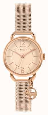 Radley | pulseira de malha em ouro rosa para mulher | mostrador em ouro rosa | RY4528