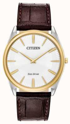 Citizen Stiletto | eco drive dos homens | pulseira de couro marrom | mostrador branco AR3074-03A